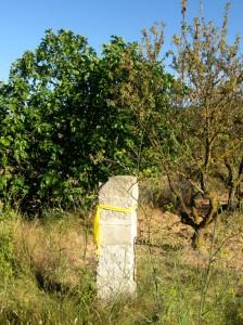 Horta de Sant Joan, paisatge amb llaços grocs