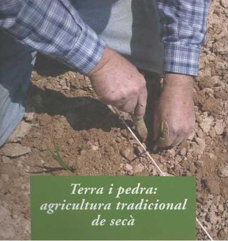 terra-i-pedra-agricultura-tradicional-de-seca